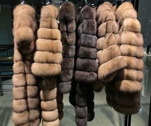 luxury and fur coat image