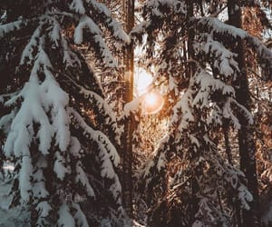 snow, wallpapers, and winter image