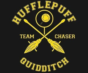 quidditch, harry potter, and hufflepuff image