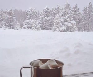 winter, snow, and hot chocolate image