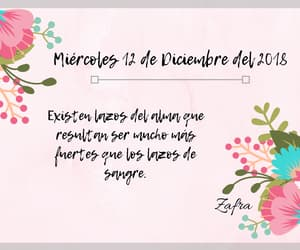 diario, frase, and frases image