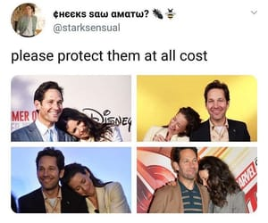 evangeline lilly, Marvel, and ant man and the wasp image