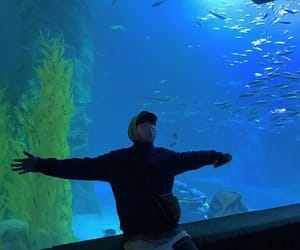 boy, dean, and aquarium image