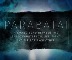 shadowhunters, parabatai, and alec lightwood image