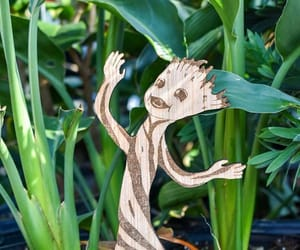 etsy, house plants, and i am groot image