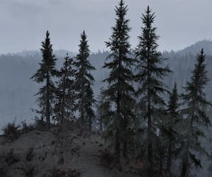 fallout, outdoors, and overcast image