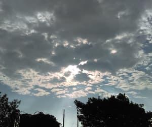 arbol, nubes, and sky image