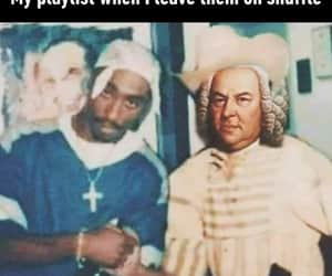 funny, music, and shuffle image
