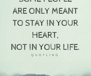heart, life, and stay image