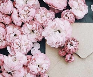 flowers, letters, and peonies image