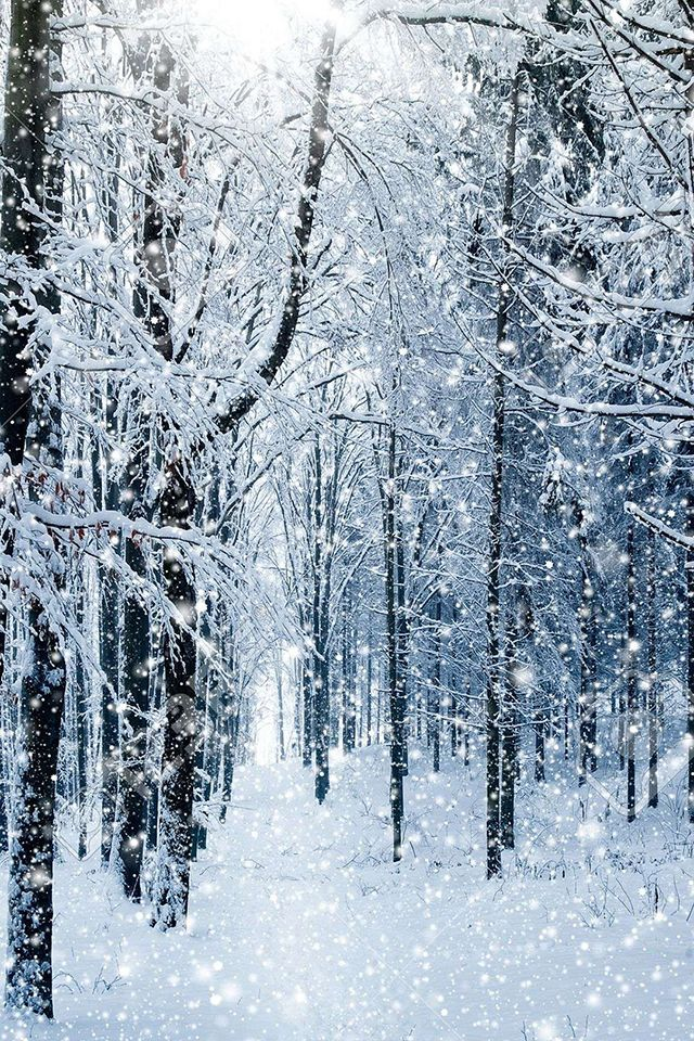 Image About Tumblr In Winter By Robertina On We Heart It