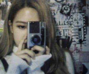 korean, rose, and kpop image
