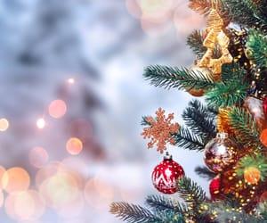 christmas, christmas tree, and cool image