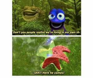 clever, dory, and films image