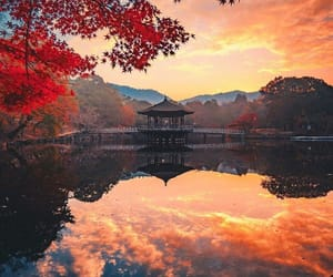 autumn and japan image
