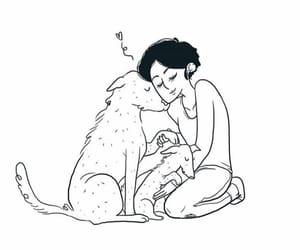 amor, Animales, and beautiful image