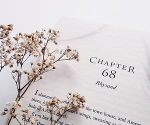 book, dried, and flower image