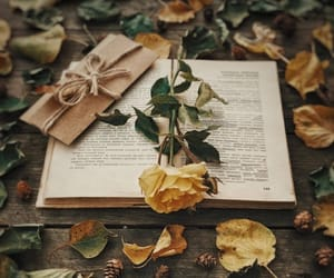 autumn and books image