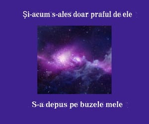 cosmos, buze, and irina rimes image