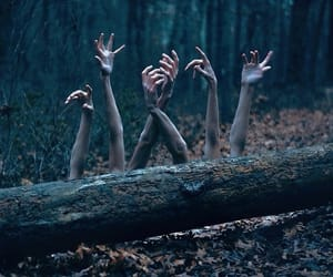 hands, scary, and horror image