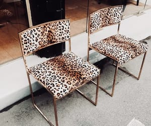 chairs, interior, and leopard image