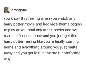 happiness, harry potter, and tumblr quotes image