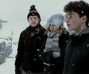 daniel radcliffe, emma watson, and friends image