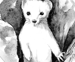 art, illustration, and weasel image