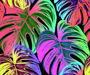 background, color, and colors image