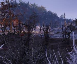 apocalypse, crop, and tomato image