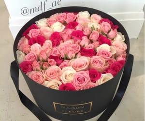 amazing, flowers, and rosas image