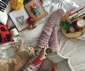 aesthetic, books, and christmas image