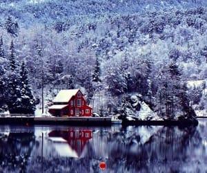 winter, snow, and lake image