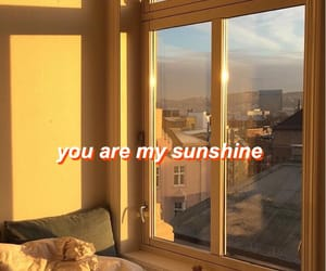 quotes, sunshine, and tumblr image