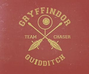 harry potter, quidditch, and hufflepuff image