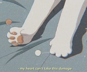 cat, anime, and paws image