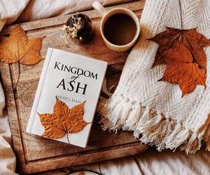autumn, books, and bookworm image