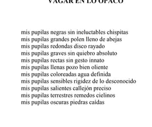 literatura, lírica, and poema image