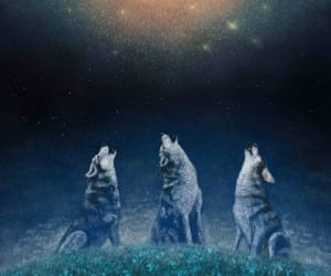 illustration, star, and wolves image