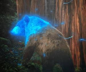 bear, fantasy, and painting image