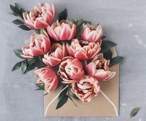 flowers, peonies, and lové image
