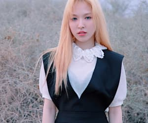 icon, red velvet, and seungwan image