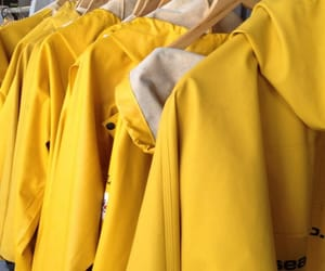 winter, yellow, and yellow coats image