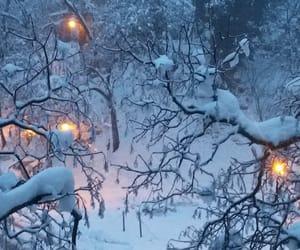 ice, lights, and merry christmas image