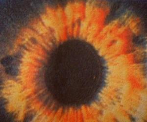aesthetic, eye, and orange image