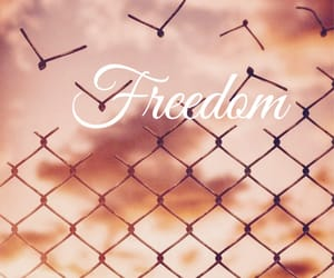 fence, freedom, and sky image