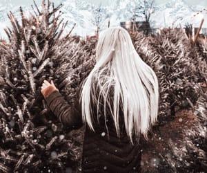 hair, holiday, and magical image