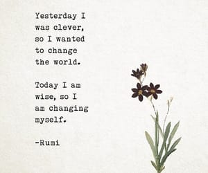 quotes, poem, and Rumi image