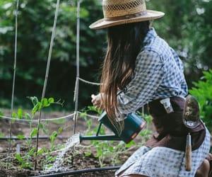 watering, garden, and gardener image