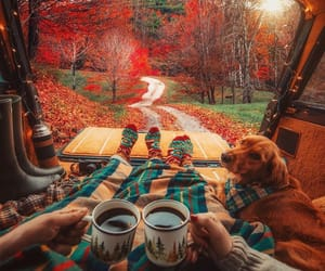 autumn, dog, and couple image